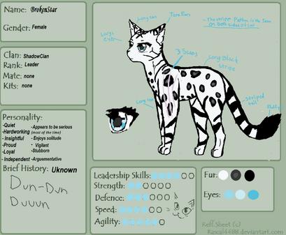Warrior cat reff sheet by rascal4488-d4iyddsacdadwsd7n