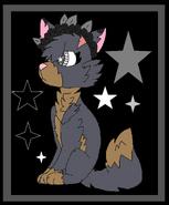 Greystarr