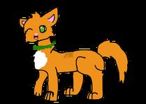 GingerPaw