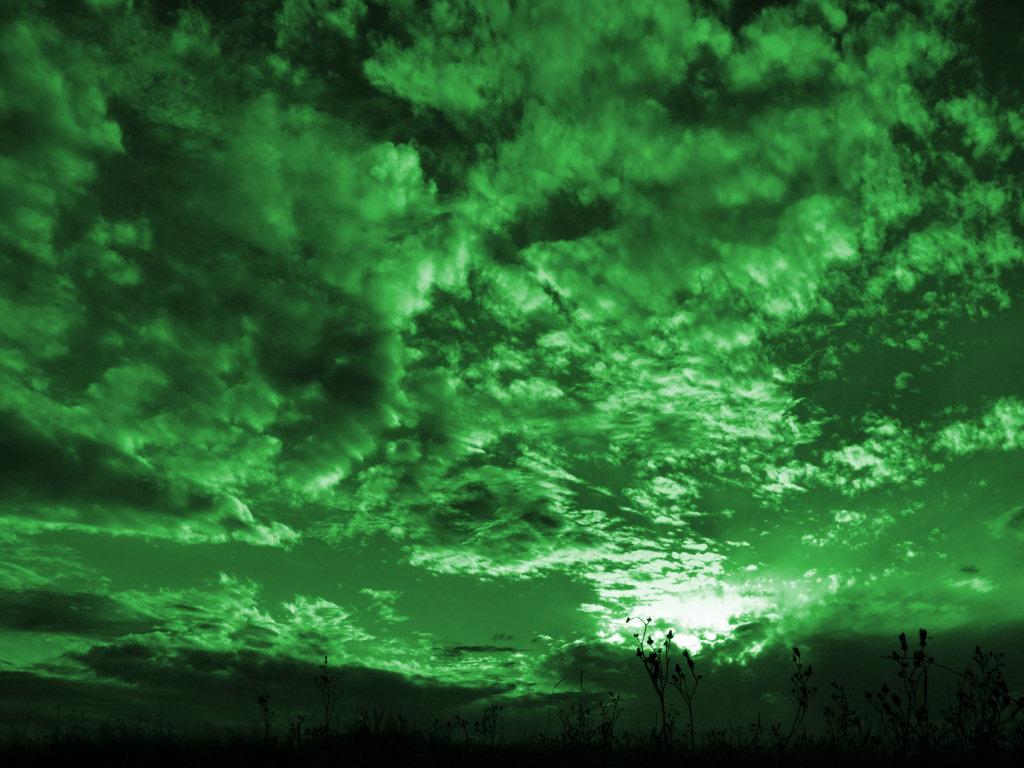 image green skies jpg animal jam clans wiki fandom powered by