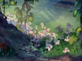 SageClan (SilencedRose)/Herb Guide