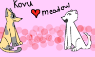 Kovu X Meadow TPHH
