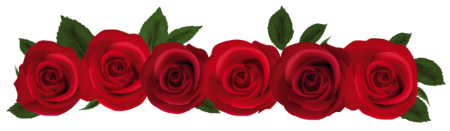 Red Flower Line Drawing : Image red rose line animal jam clans wiki fandom