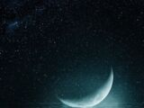 Moonclan (Lilyheart58 and Stoneclaw45)