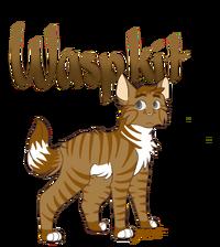 Waspkit1