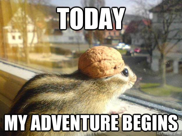 latest?cb=20160227160810 image rodent meme jpg animal jam clans wiki fandom powered,Animal Jam Meme