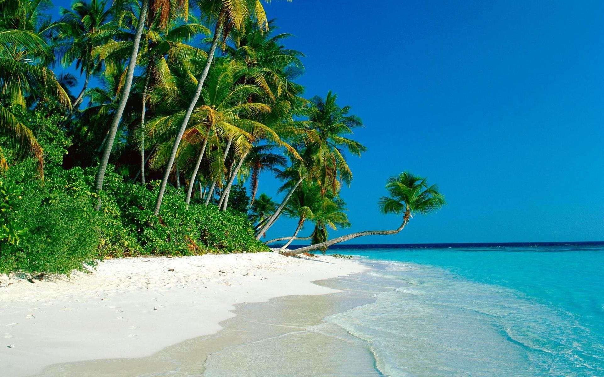 Tropical Island Beach Wallpaper 1 Jpg