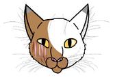 animal-jam-clans-1.wikia