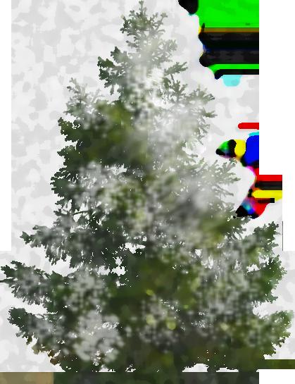 Pine Tree 600 Sponge Snow