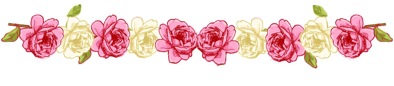 Daisy Cakes Wiki