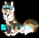 NITHYA456