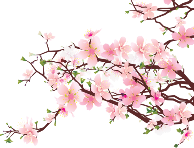image 14 cherry blossom tree clip art free cliparts that you can rh animal jam clans wikia com cherry blossom clipart png cherry blossom clipart black and white