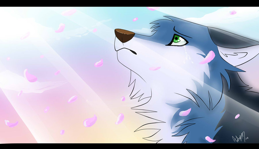Sad Wolf By Atachi00 D4kjqv6