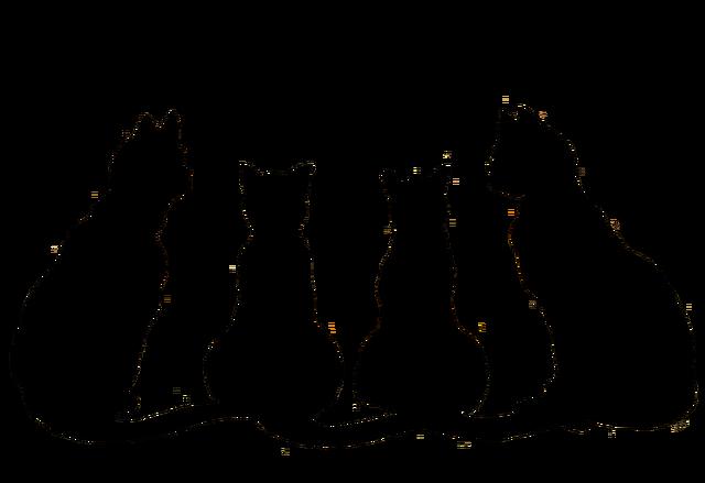 Image - Halloween-black-cat-clip-art-uex4axt.png | Animal Jam ...