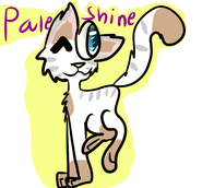 Paleshine Tribute