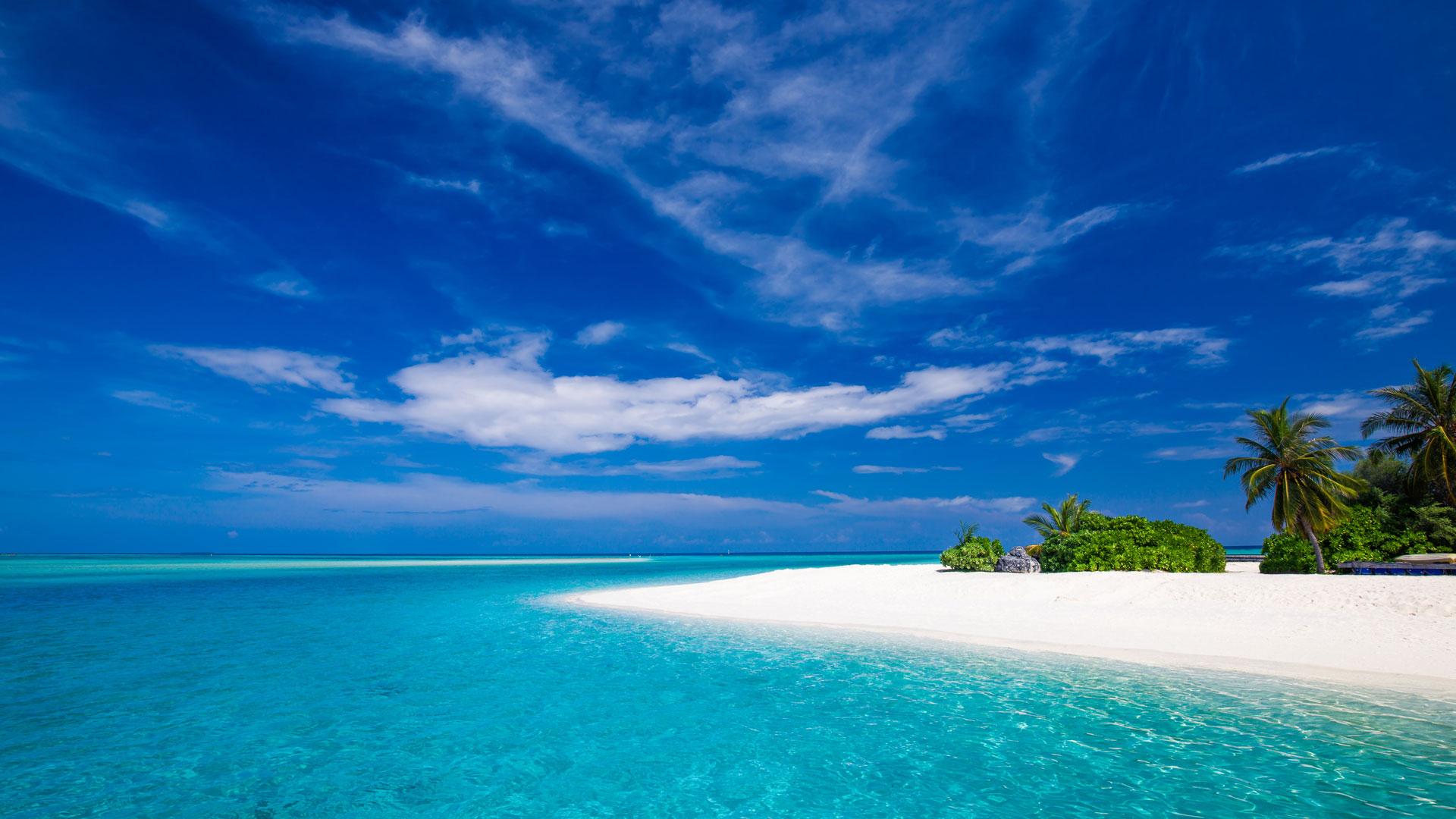 image nws st indian ocean beach jpg animal jam clans wiki
