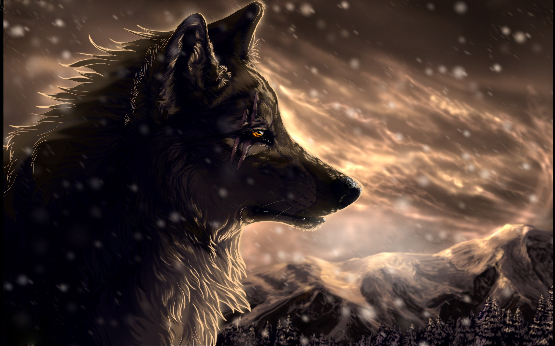 Image 2323 Wolf Anime Jpg Animal Jam Clans Wiki Fandom Powered
