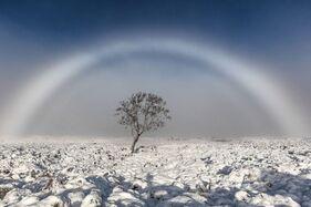 Fog-rainbow
