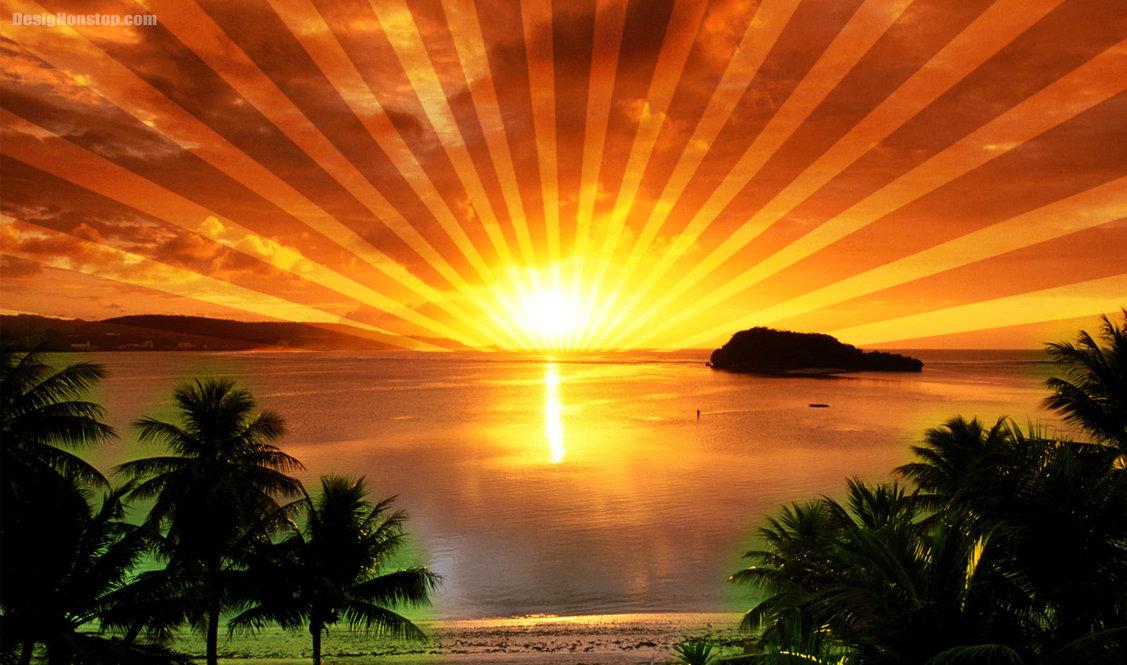 Image - Sunrise-Images-6.jpg | Animal Jam Clans Wiki | FANDOM ...