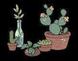 Plantsnice.png