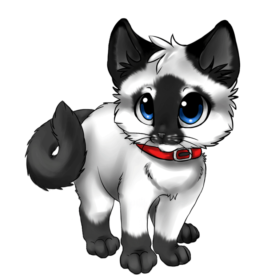 Siamese kitten adoptable closed by animaladopts12 d5tgbao 1 png