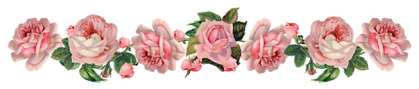 Rose border blog