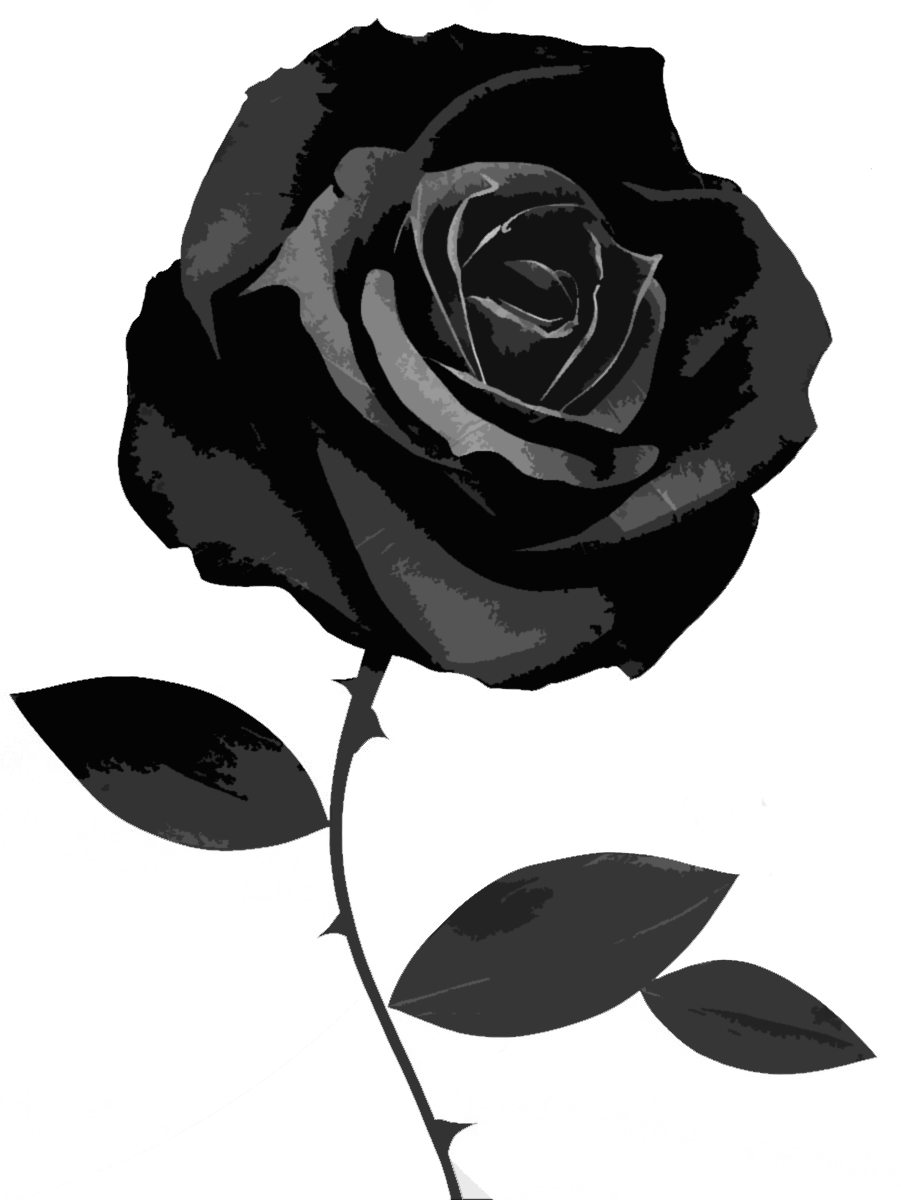 Image 36274950 black rose imagesg animal jam clans wiki 36274950 black rose imagesg voltagebd Choice Image