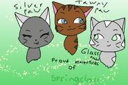 Apprentices of springclan