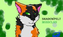 Shadowpeltnew