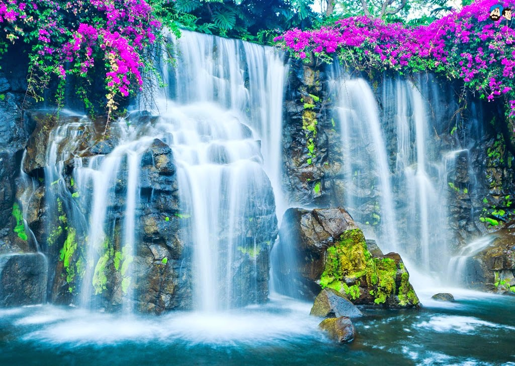 Top 10 Most Amazing Waterfalls In The World Jpg