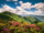Floralclan