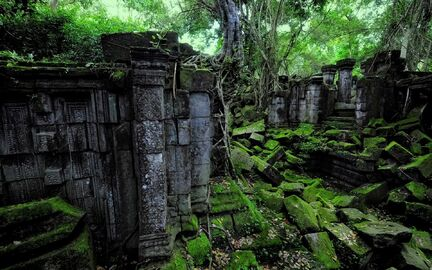 Forest-ruins-beautiful-moss-covered-stones...