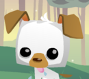 Pet Puppy- Animal Jam