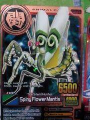 Spiny flower