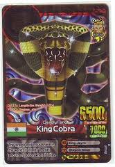 File:King cobra.jpg