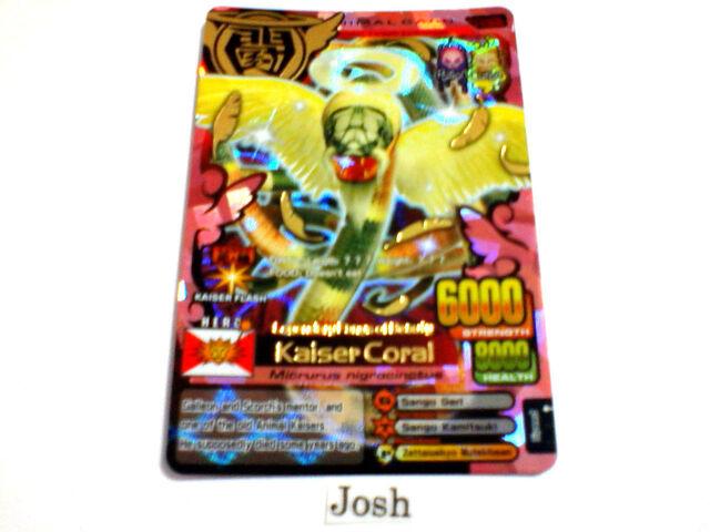 File:Kaiser coral.JPG