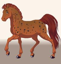 Jasperhorse