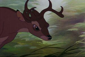 Bambi 353