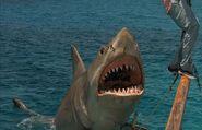 Great White Shark from Jaws the Revenge
