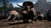 Triceratops animal armageddon