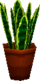 Snakeplantgc