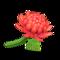 Crisantemo rojo (New Horizons)