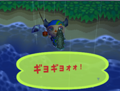 Coelacanth (Animal Forest e+ caught)