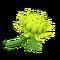Crisantemo verde (New Horizons)