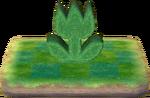 Seto tulipán