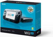 Pack Premium Wii U