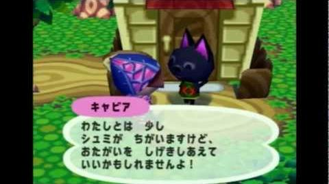 Animal Crossing E Tour of Lin's Town (Gamecube)