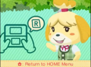 Photos with Animal Crossing EU Title bottom screen