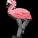 Mrs.flamingocf