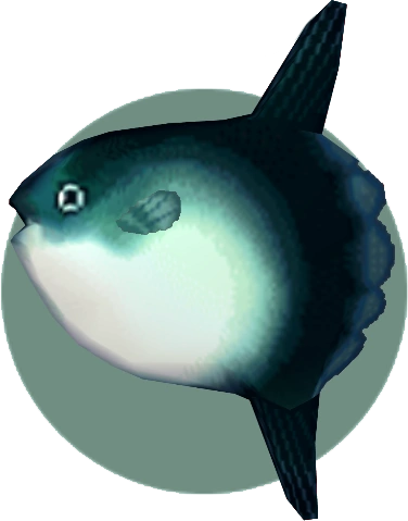 Animal crossing new leaf ocean fish for Acnl fish guide